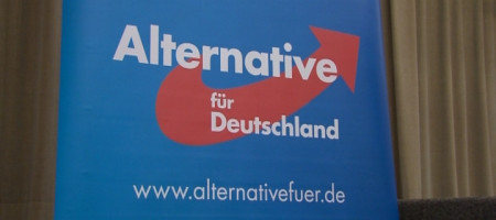 AfD Parteitag RT